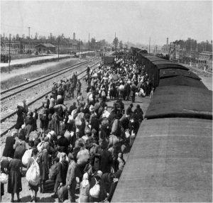 Aankomst transport op Auschwitz - bron: YadVashem.org